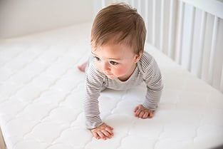 Newton Crib Mattress by Newton Rest