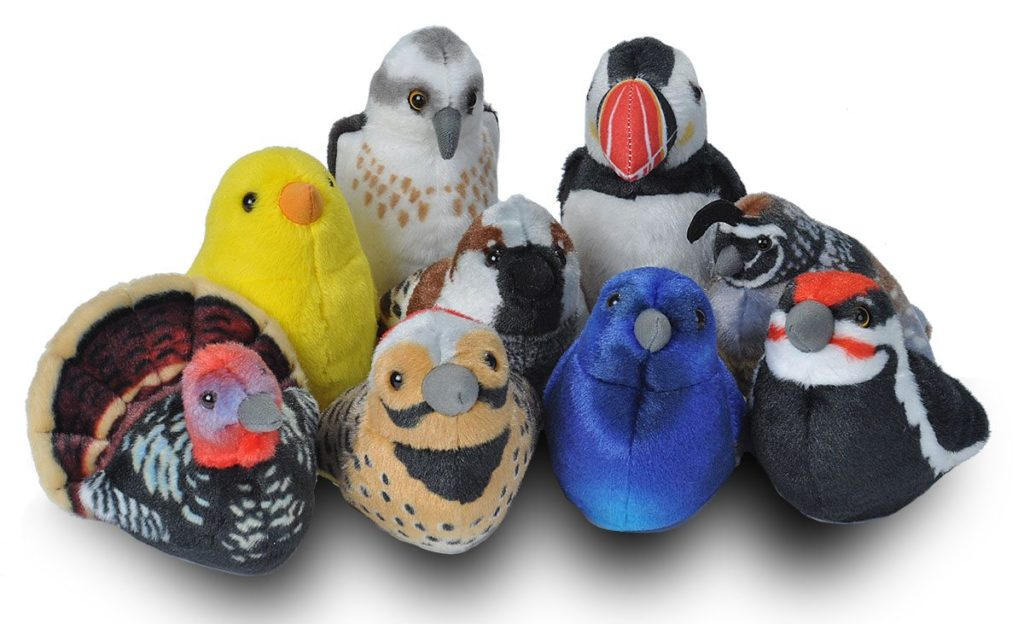 Audubon Birds with Real Bird Calls
